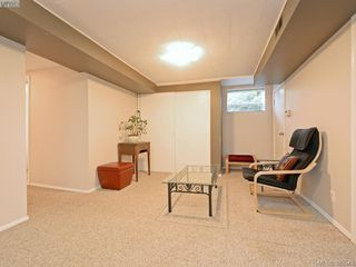 Photo 12: 1720 Taylor St in VICTORIA: SE Camosun Single Family Detached for sale (Saanich East)  : MLS®# 774725