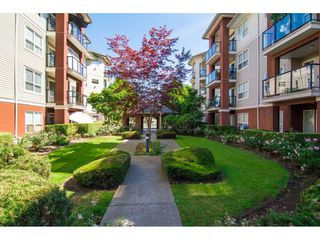 "Photo 3: 117 20259 MICHAUD Crescent in Langley: Langley City Condo for sale in ""City Grande"" : MLS®# R2235723"