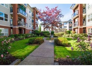 "Photo 2: 117 20259 MICHAUD Crescent in Langley: Langley City Condo for sale in ""City Grande"" : MLS®# R2235723"