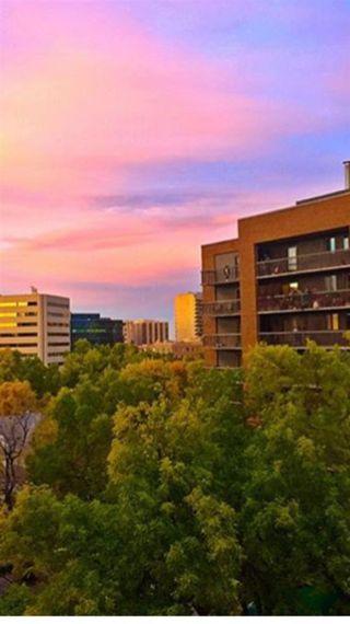 Photo 7: 703 9916 113 Street in Edmonton: Zone 12 Condo for sale : MLS®# E4098109