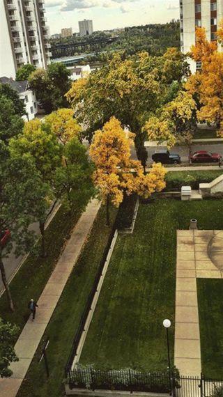 Photo 8: 703 9916 113 Street in Edmonton: Zone 12 Condo for sale : MLS®# E4098109