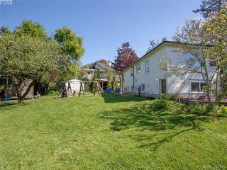 Photo 18: 3700 Winston Cres in VICTORIA: SE Quadra House for sale (Saanich East)  : MLS®# 786584