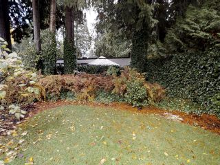 Photo 5: 937 56A Street in Delta: Tsawwassen East House for sale (Tsawwassen)  : MLS®# R2319327