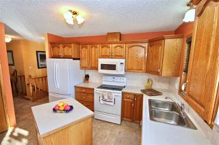 Photo 3: 213 Parkview Drive: Wetaskiwin House for sale : MLS®# E4145025