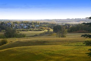Photo 30: 53 Riverridge Road: Rural Sturgeon County House for sale : MLS®# E4149297