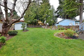 Photo 19: 4753 WHITAKER Road in Sechelt: Sechelt District House for sale (Sunshine Coast)  : MLS®# R2358197