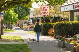 Photo 15: 306 1031 Burdett Avenue in VICTORIA: Vi Downtown Condo Apartment for sale (Victoria)  : MLS®# 411414