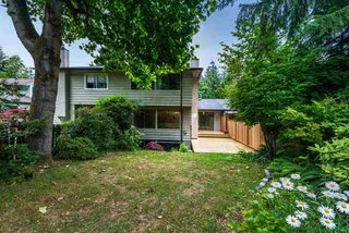 Photo 18: 1793 RUFUS Drive in North Vancouver: Westlynn House for sale : MLS®# R2387344