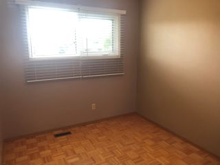 Photo 8:  in Edmonton: Zone 29 House for sale : MLS®# E4170137
