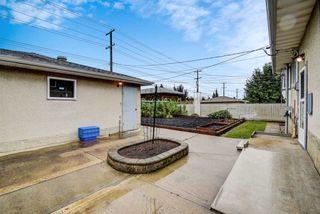 Photo 30: 7031 137 Avenue in Edmonton: Zone 02 House for sale : MLS®# E4181503