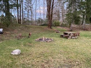 Photo 31: 3412 LODGE DRIVE in BLACK CREEK: CV Merville Black Creek House for sale (Comox Valley)  : MLS®# 837156