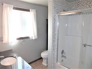 Photo 17: 18308 78 Avenue in Edmonton: Zone 20 House for sale : MLS®# E4204149