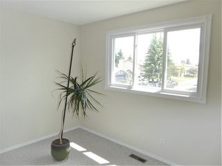 Photo 16: 18308 78 Avenue in Edmonton: Zone 20 House for sale : MLS®# E4204149