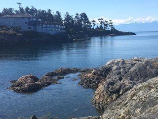 Photo 10: Lot c Sturdee St in Esquimalt: Es Saxe Point Land for sale : MLS®# 842202