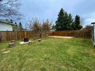 Photo 28: 262 Centennial Drive: Wetaskiwin House for sale : MLS®# E4219892