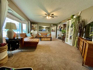 Photo 15: 262 Centennial Drive: Wetaskiwin House for sale : MLS®# E4219892