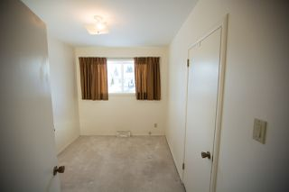 Photo 19: 16166 107A Avenue in Edmonton: Zone 21 House for sale : MLS®# E4222429