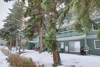 Photo 22: 5208 5208-315 Southampton Drive SW in Calgary: Southwood Apartment for sale : MLS®# A1059151