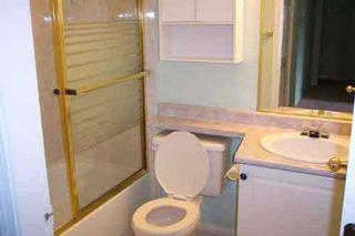 Photo 4: #17 21409 Dewdney Trunk: House for sale (West Maple Ridge)  : MLS®# V516020