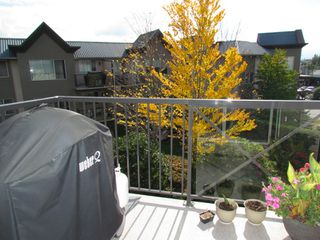 "Photo 17: #321 32725 GEORGE FERGUSON WY in ABBOTSFORD: Abbotsford West Condo for rent in ""UPTOWN"" (Abbotsford)"