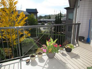 "Photo 18: #321 32725 GEORGE FERGUSON WY in ABBOTSFORD: Abbotsford West Condo for rent in ""UPTOWN"" (Abbotsford)"