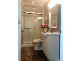 Photo 18: 10280 MCLEOD Court in Richmond: Bridgeport RI House for sale : MLS®# V1065911