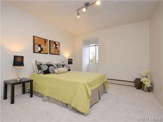 Photo 11: 303 1680 Poplar Avenue in VICTORIA: SE Mt Tolmie Condo Apartment for sale (Saanich East)  : MLS®# 358154