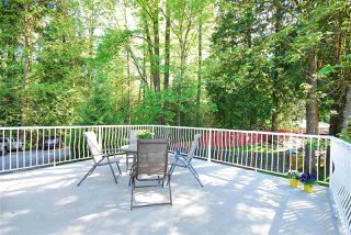 "Photo 12: 3586 COAST MERIDIAN Road in Port Coquitlam: Lincoln Park PQ House for sale in ""OXFORD HEIGHTS"" : MLS®# R2058786"