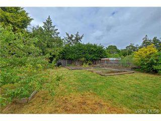 Photo 17: 1768 Carrick St in VICTORIA: Vi Jubilee Single Family Detached for sale (Victoria)  : MLS®# 731705