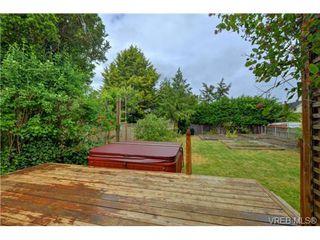 Photo 16: 1768 Carrick St in VICTORIA: Vi Jubilee Single Family Detached for sale (Victoria)  : MLS®# 731705