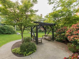 "Photo 19: 245 15 SIXTH Avenue in New Westminster: GlenBrooke North Townhouse for sale in ""CROFTON"" : MLS®# R2074537"