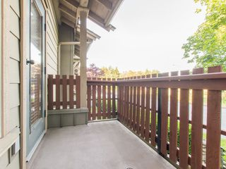 "Photo 17: 245 15 SIXTH Avenue in New Westminster: GlenBrooke North Townhouse for sale in ""CROFTON"" : MLS®# R2074537"