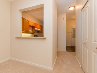 "Photo 6: 245 15 SIXTH Avenue in New Westminster: GlenBrooke North Townhouse for sale in ""CROFTON"" : MLS®# R2074537"