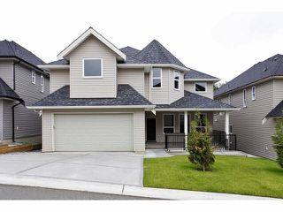 Photo 2: 6809 206 Street in Langley: Willoughby Heights House for sale : MLS®# R2099387