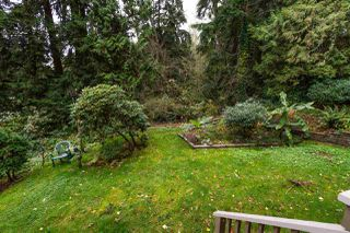 Photo 19: 329A EVERGREEN Drive in Port Moody: College Park PM Townhouse for sale : MLS®# R2120916