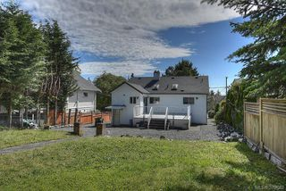Photo 14: 3381 Cook Street in VICTORIA: SE Maplewood Single Family Detached for sale (Saanich East)  : MLS®# 379682