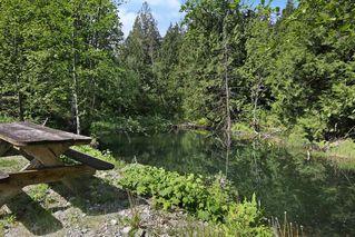 Photo 20: 17600 ARBOR Road: Harrison Mills House for sale (Harrison Mills / Mt Woodside)  : MLS®# R2344045