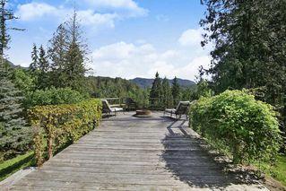 Photo 14: 17600 ARBOR Road: Harrison Mills House for sale (Harrison Mills / Mt Woodside)  : MLS®# R2344045
