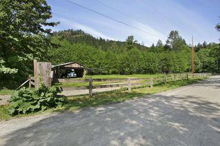 Photo 19: 17600 ARBOR Road: Harrison Mills House for sale (Harrison Mills / Mt Woodside)  : MLS®# R2344045
