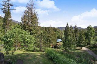 Photo 15: 17600 ARBOR Road: Harrison Mills House for sale (Harrison Mills / Mt Woodside)  : MLS®# R2344045