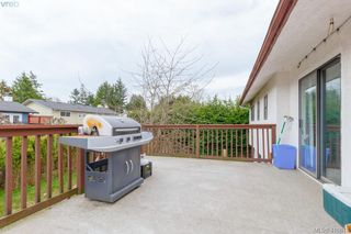 Photo 34: 4389 Columbia Dr in VICTORIA: SE Gordon Head House for sale (Saanich East)  : MLS®# 813897