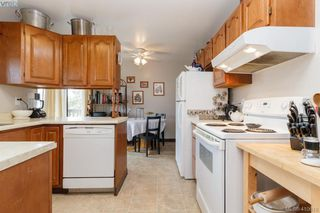 Photo 15: 4389 Columbia Dr in VICTORIA: SE Gordon Head House for sale (Saanich East)  : MLS®# 813897