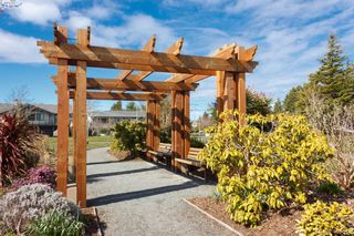 Photo 50: 4389 Columbia Dr in VICTORIA: SE Gordon Head House for sale (Saanich East)  : MLS®# 813897