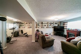 Photo 23: 20 ANDREW Crescent: St. Albert House for sale : MLS®# E4156968