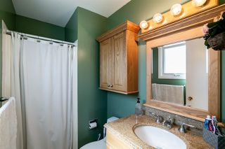 Photo 15: 20 ANDREW Crescent: St. Albert House for sale : MLS®# E4156968