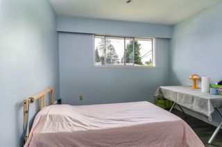 Photo 12: 3145 KILMER Street in Port Coquitlam: Birchland Manor House for sale : MLS®# R2378629