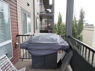 Photo 22: 309 9519 160 Avenue in Edmonton: Zone 28 Condo for sale : MLS®# E4216993