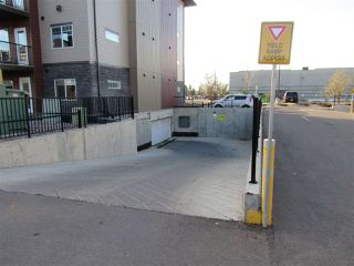 Photo 29: 309 9519 160 Avenue in Edmonton: Zone 28 Condo for sale : MLS®# E4216993