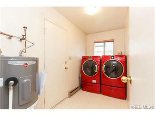 Photo 13: 4113 Larchwood Dr in VICTORIA: SE Lambrick Park House for sale (Saanich East)  : MLS®# 699447