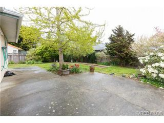 Photo 14: 4113 Larchwood Dr in VICTORIA: SE Lambrick Park House for sale (Saanich East)  : MLS®# 699447